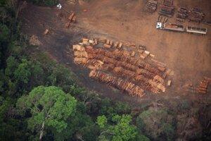 Drevo pri závode na spracovanie dreva pri Vila Nova Samuel v Brazílii.