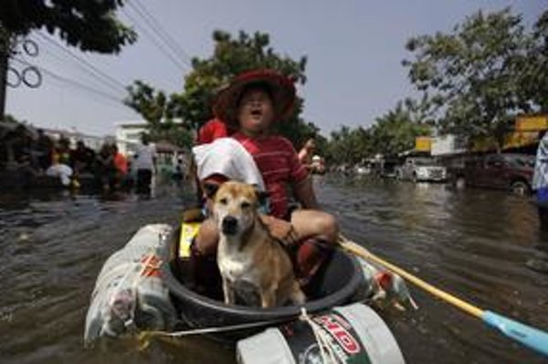 Najhoršie katastrofy boli japonské cunami a thajské záplavy (na snímke).