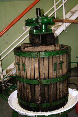 slam-vino-mlync.jpg