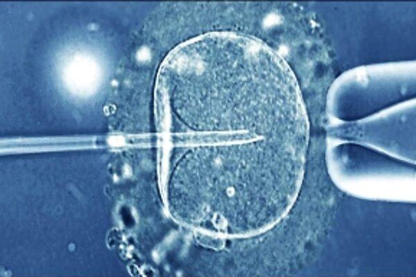 Bude raz človek niesť genetický materiál od troch rodičov?