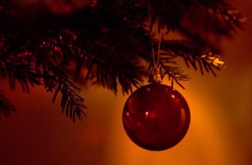 vianocna-gula_sme.jpg