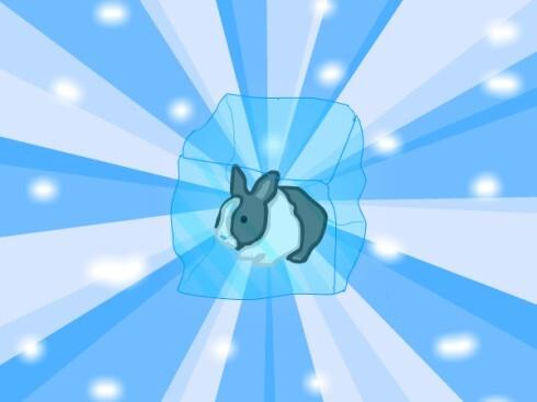 bunny_b.jpg