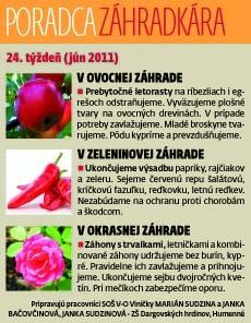 zah23.jpg