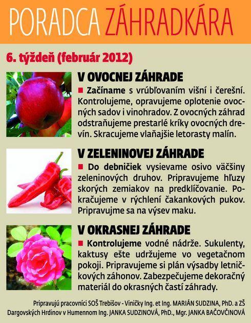 zahradkar_05_res.jpg