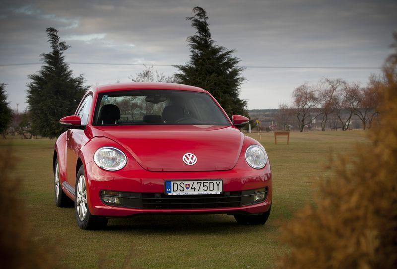 12_beetle_big.jpg