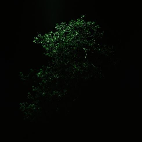 08_res.jpg