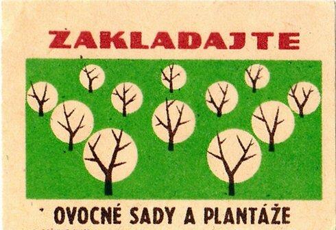 zakladajte_ovocne_sady_a_plantaze_2_res.jpg
