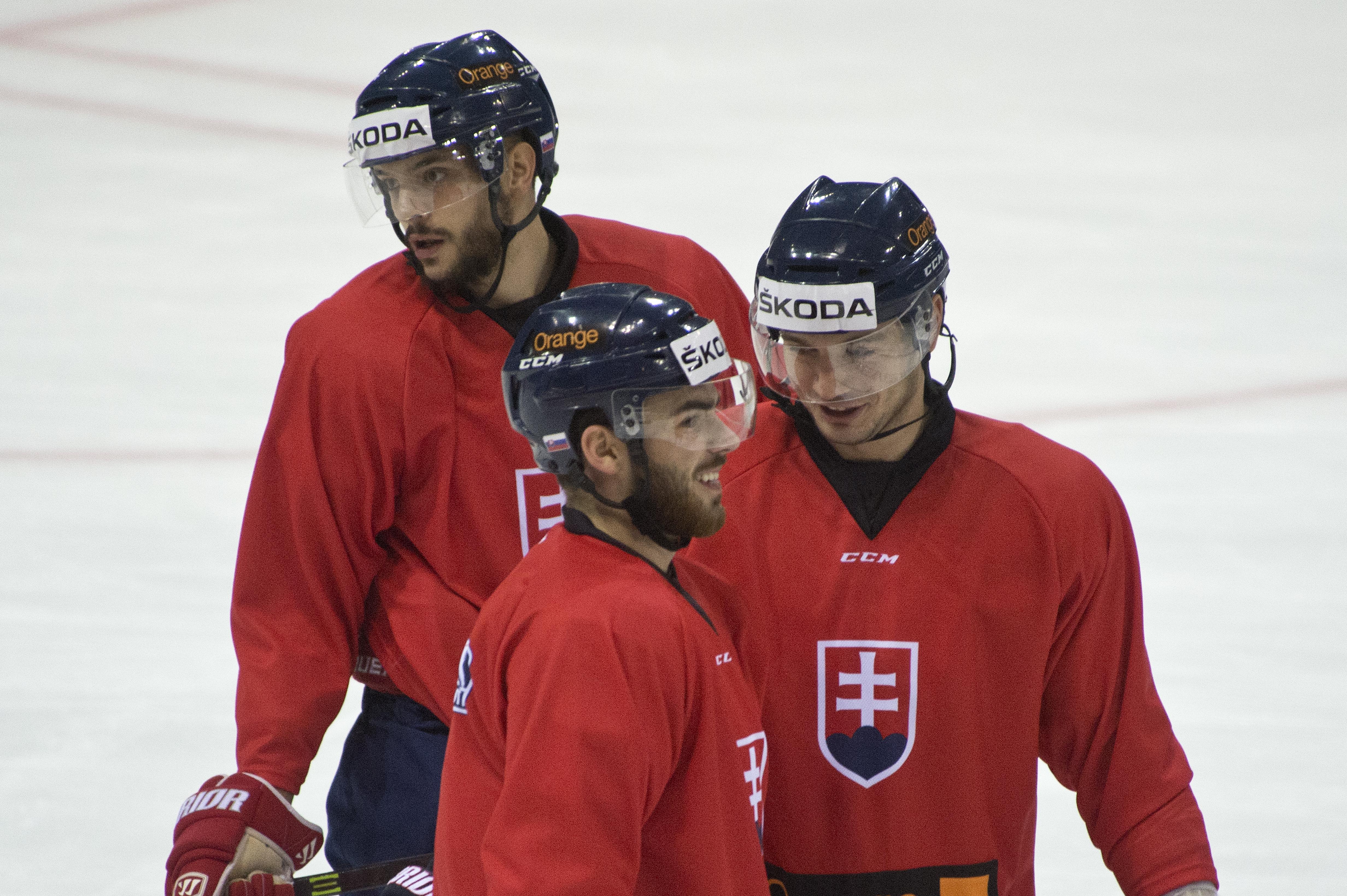 20141105_hokej6197551.jpg