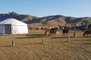 Typickým príbytkom jurta.