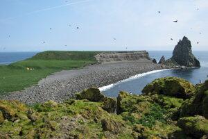 Pohľad na erodovaný sopečný dóm Castle Rock na ostrove Bogoslof. Dóm vznikol pri reupcii v roku 1796. Záber je z roku 2009.