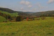 Pohľad na lesy v bývalom vojenskom obvode Javorina v okrese Kežmarok.