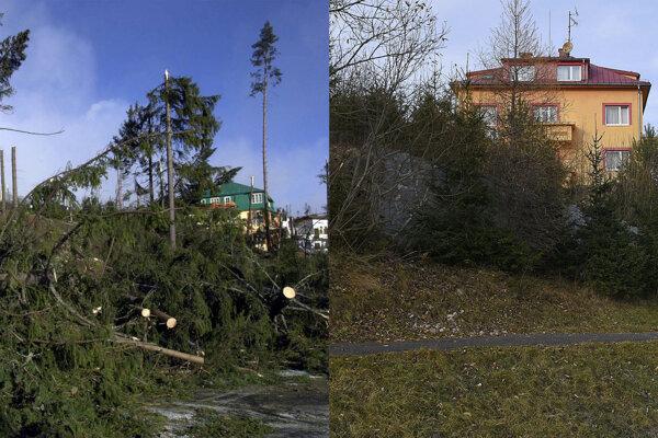 Víchrica v roku 2004 (vľavo), vpravo situácia po 15 rokoch.