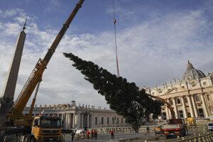 Na vatikánskom námestí už postavili vianočný stromček.