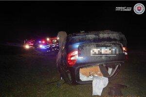 Vodič dopravnú nehodu neprežil.