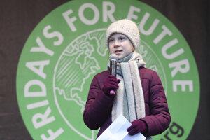 Greta Thunbergová na proteste v Hamburgu.