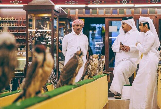 Sokoly sú národným symbolom Kataru