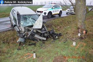 Pri nehode utrpela vodička viacero zranení.