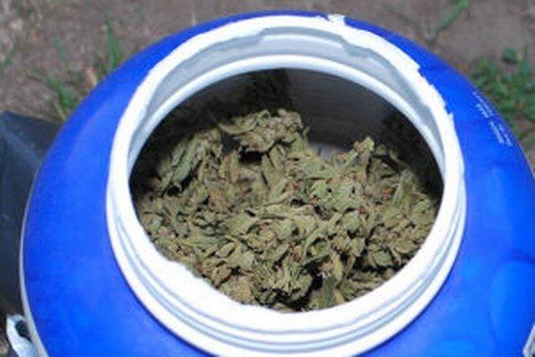 U podozrivých našli väčšie množstvo zelenej rastliny, pravdepodobne marihuany.