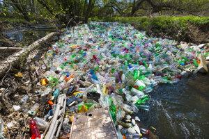 Farebná škvrna plná plastových fliaš sa zachytila na padnutom dreve.