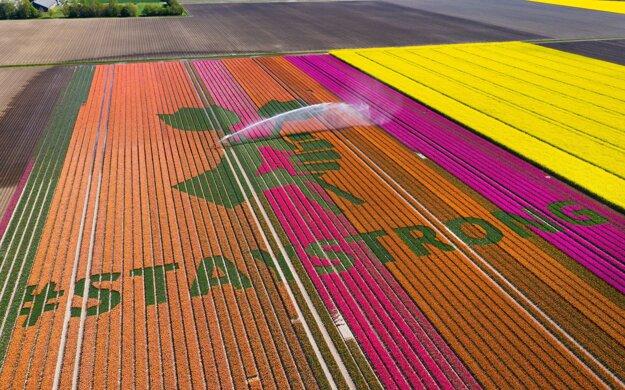 Nápis na tulipánových poliach.
