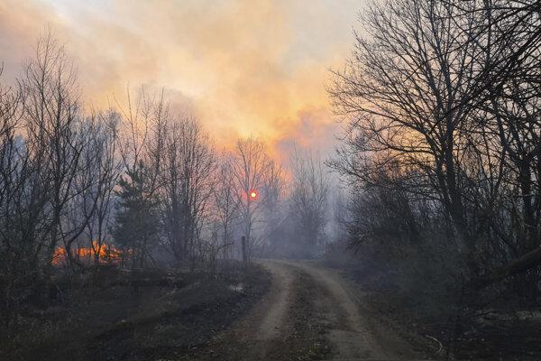 Lesný požiar blízko dediny Volodymyrivka v uzavretej zóne okolo jadrovej elektrárne Černobyľ 5. apríla 2020.
