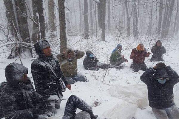 Migrantov našla polícia v lese.