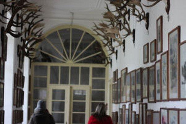 Múzeum vo Svätom Antone má najväčšiu zbierku s témou poľovníctva na Slovensku.