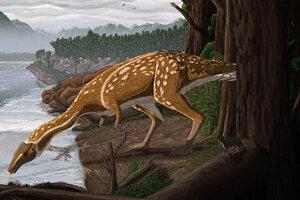 Umelecké zobrazenie elaphrosaura.