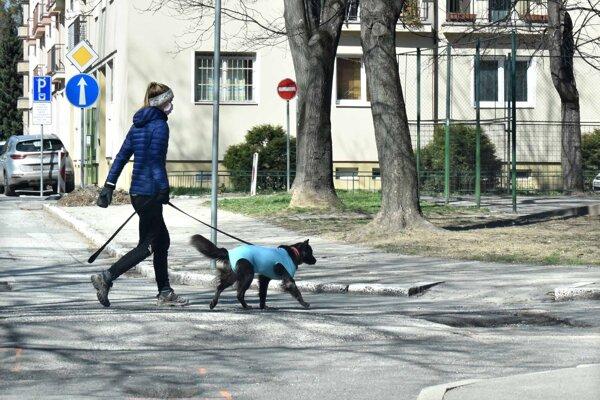 Mesto vyberie na dani za psa vyše 100-tisíc eur. Polovicu posiela mestským častiam, aby zabezpečili služby pre psičkárov.