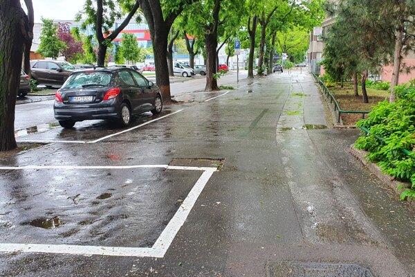 Značenie parkovacích miest v Novom Meste