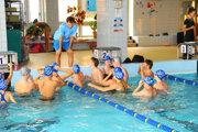 Na spoločné tréningy na plavárni vLeviciach budú musieť plavci do októbra zabudnúť. Prebieha tam totiž kompletná rekonštrukcia bazéna.