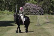 Alžbeta je vychýrenou milovníčkou zvierat, najmä psov a koní.