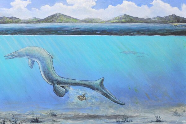Umelecká predstava o mosasaurovi, ktorý nakládol vajíčko. Vedci predpokladajú, že nový plaz sa vyliahol krátko na to.