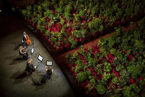 Opera v Barcelone odohrala koncert pre izbové rastliny.
