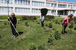 Pokosenú trávu hrabú pracovníčky obecného úradu.