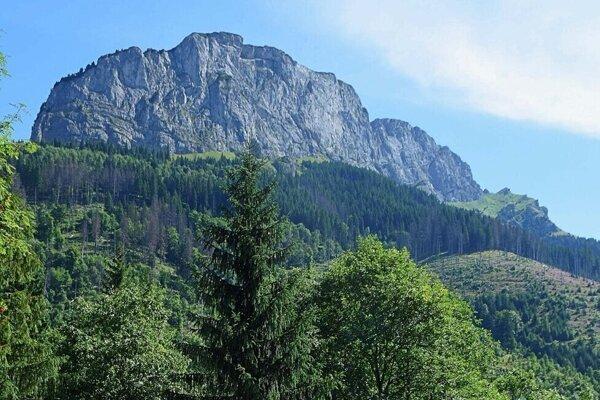 Turistov na chodníku vedúcom Javorovou dolinou majú ohrozovať padajúce suché konáre.