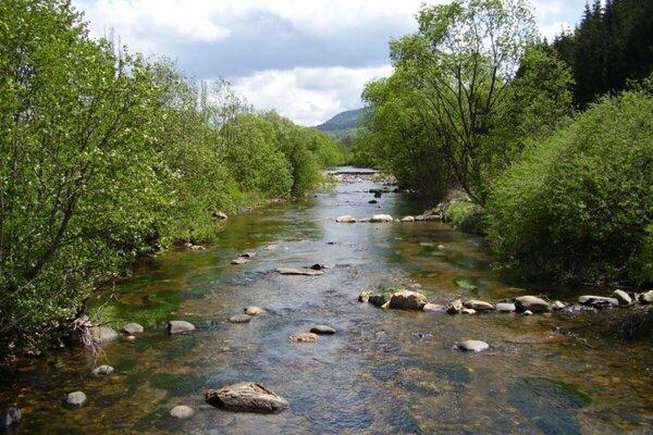 Výnimočnosť Hrona na jeho hornom toku chcú ochrániť, vznikne najdlhší chránený areál.