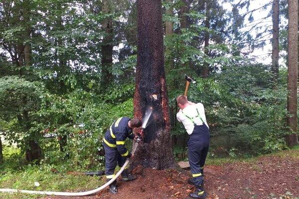 Dobrovoľní hasiči z Považskej Teplej likvidujú požiar stromu