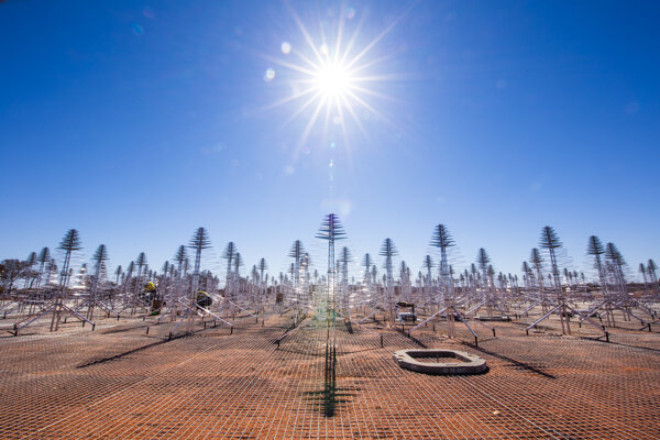 Sústava antén tvoriacich rádioteleskop Murchison Widefield Array v západnej Austrálii. Doteraz najväčšie pátranie po mimozemšťanoch nič neodhalilo.