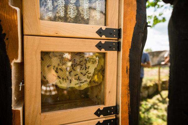 Dobová včelnica na Trenčianskom hrade.