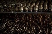 Na archívnej snímke zo 4. apríla 2014 lebky a kosti zavraždených ľudí v katolíckom kostole na pamiatku tých, ktorí zahynuli počas rwandskej genocídy v roku 1994, v meste Ntarama. Francúzska polícia zatkla v sobotu ráno 16. mája 2020 pri Paríži najhľadanejšieho Rwanďana na svete - Feliciena Kabugu. Ide o muža podozrivého z toho, že financoval genocídu v Rwande.