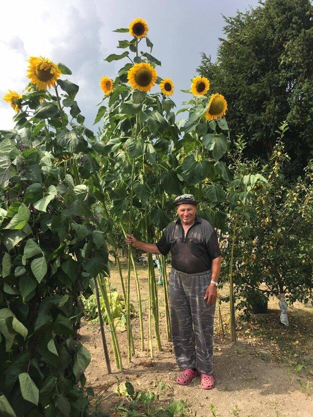 Ján Grussmann, ktorý má 81 rokov, sa záhradke venuje celý svoj život.
