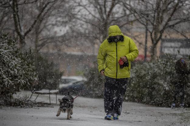 Muž venčí psa v oblasti  Rivas Vaciamadrid.