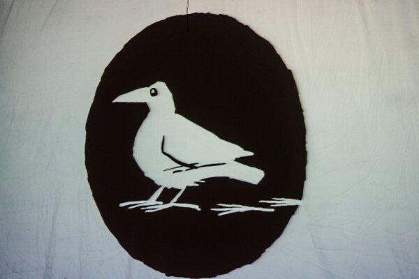Biela vrana.