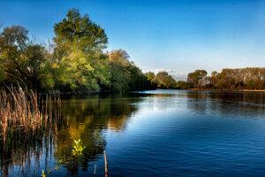Rybník v Kamennom Mlyne.