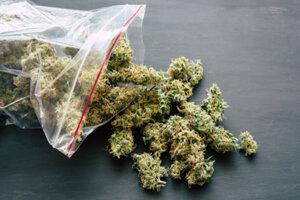 Expertíza potvrdila, že muž mal pri sebe marihuanu.