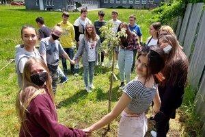 Študenti bojujú proti klimatickým zmenám výsadbou stromu.