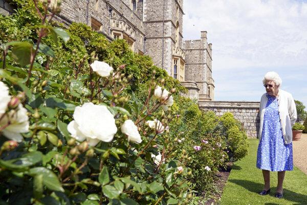 Britská kráľovná Alžbeta II. v záhradách Windsoru.