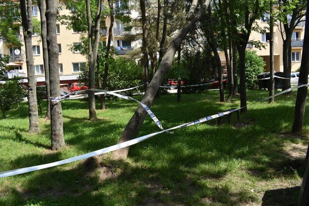 Strom pri detskom ihrisku ostal vyvalený podľa miestnych približne dva týždne.