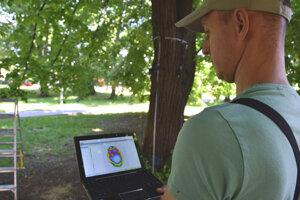 Prístroj ukázal, že kmeň 50-ročnej lipy v parku na Hollého ulici je takmer celý dutý.